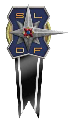 File:Sldfawardmedalofvalor.png