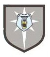 3rd Bear Guards (Clan Ghost Bear).jpg