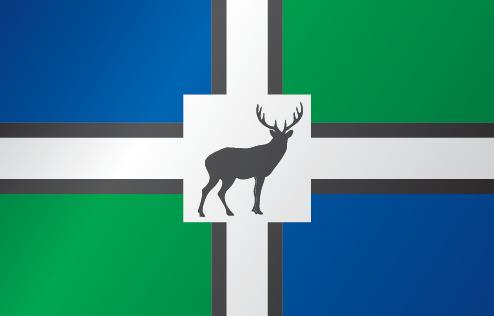 File:Bucklands-flag.png