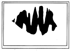 File:Hobbs Flag.jpg