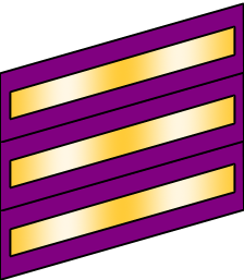 LieutenantColonelFWL.png