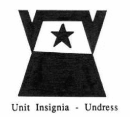 File:Wacorangers-unit-dress.png