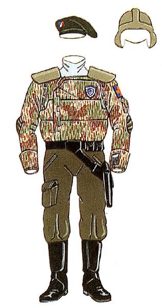 File:FRR-field-uniform-3054.png