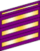 Three wide and one narrow purple bands with gold inset stripes.