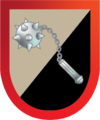 Calderon's Commando (Pirate) Insignia.png