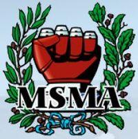 Melissa Steiner Martial Academy of Bolan logo