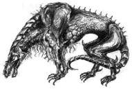 Sphinx Raptor.jpg