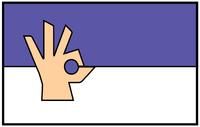 Emblem of Wilson's Hussars