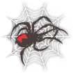 Wolf Spider Battalion.jpg