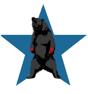 14th Battle (Clan Ghost Bear).png