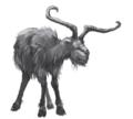 Brockway goat.png