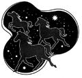 1st Canopian Light Horse.jpg