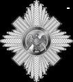 Grey Watch logo.png