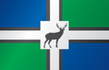 Bucklands-flag.png