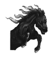 Hell's Horse CBTComp.png