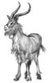 Tharkan gazelle.png