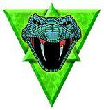 Clan Steel Viper.jpg